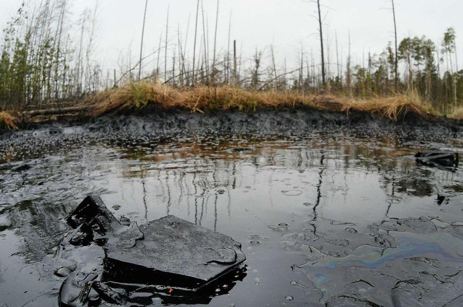 Глава Росприроднадзора оценивает ущерб от разлива нефти в Коми в 300 млн рублей