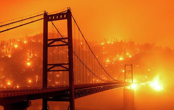 В Америке и Канаде тоже леса горят. И там тоже к этому не готовы