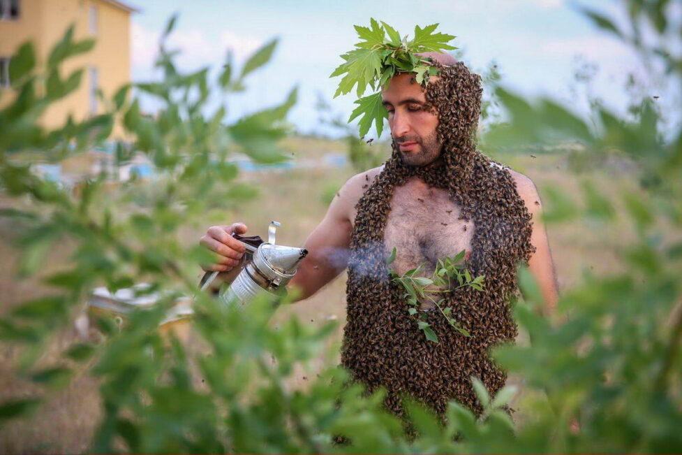 План Европы жить на деревьях. Не надо мешать