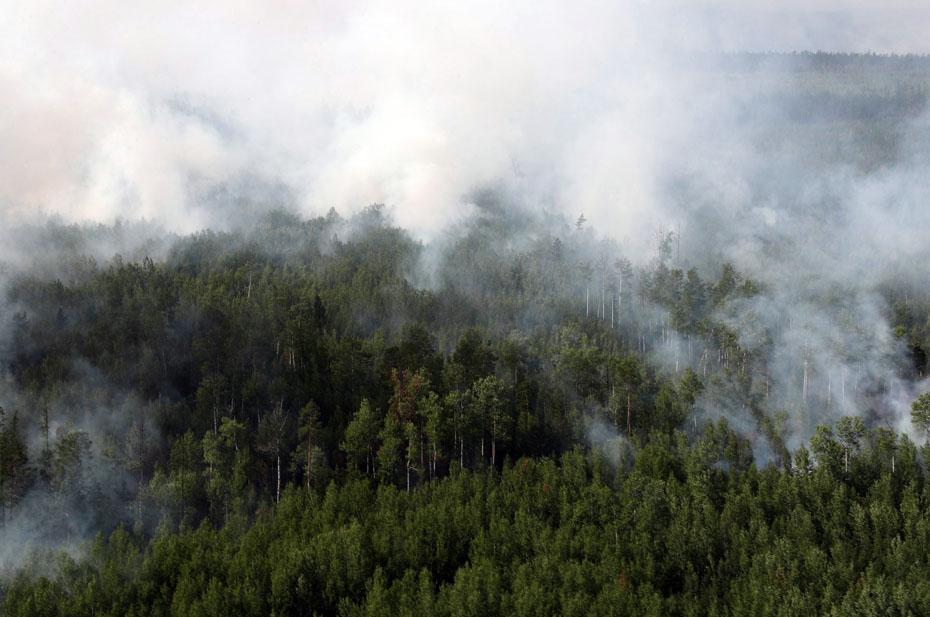Глава Якутии считает, что в республике происходят катастрофические изменением климата