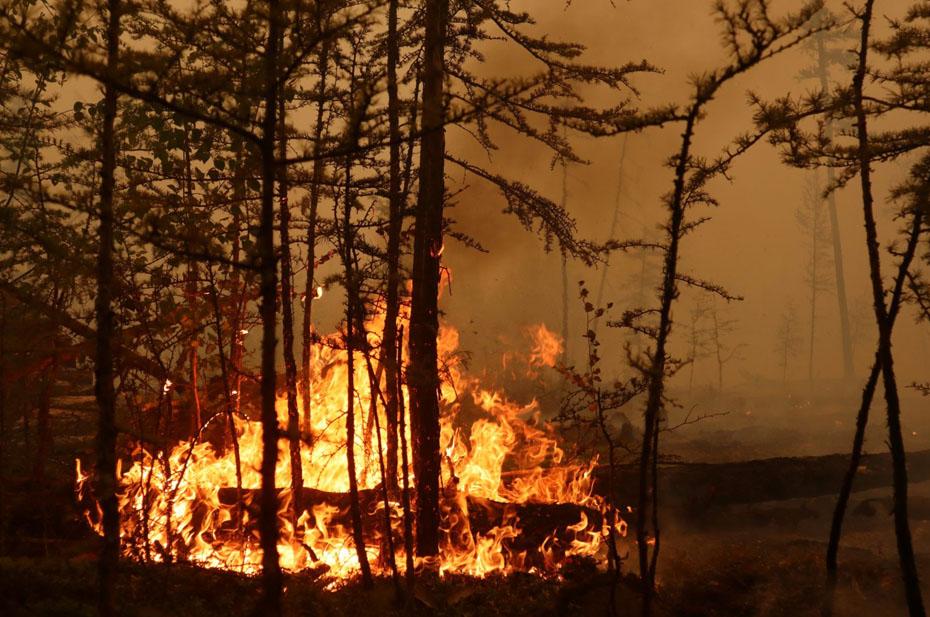 В Якутии горит свыше полутора миллионов гектаров леса