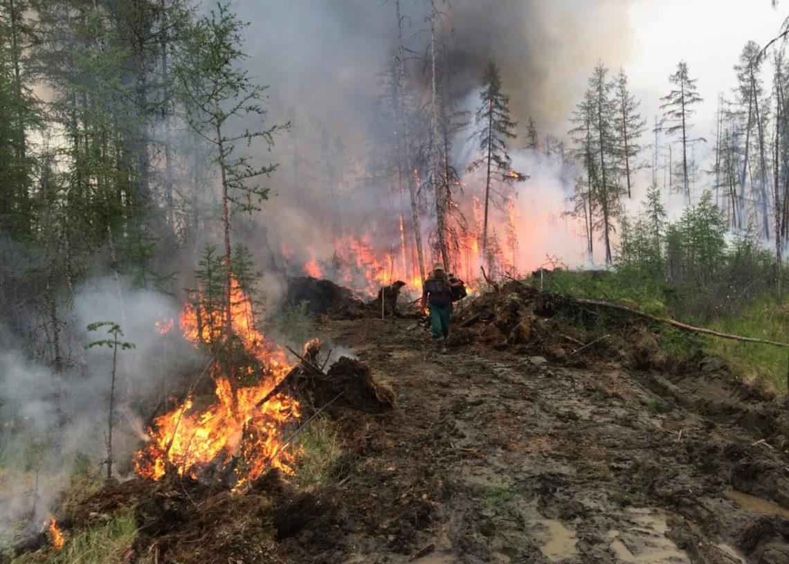Пожары в Якутии