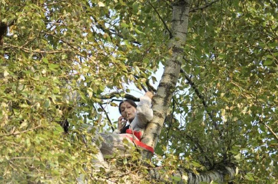 Женщина с арбалетом залезла на дерево в Москве