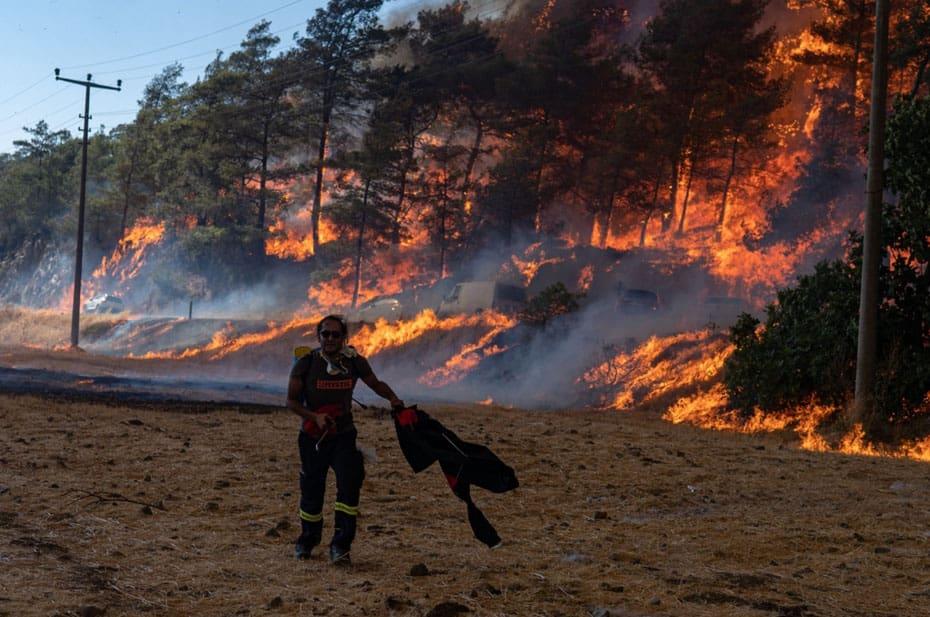 Почти все лесные пожары в Турции локализованы